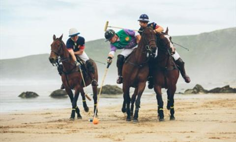 Newquay's Famous Polo On The Beach 2015